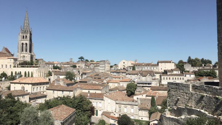 De Bordeaux à Saint-Émilion : entre vignobles etpatrimoine