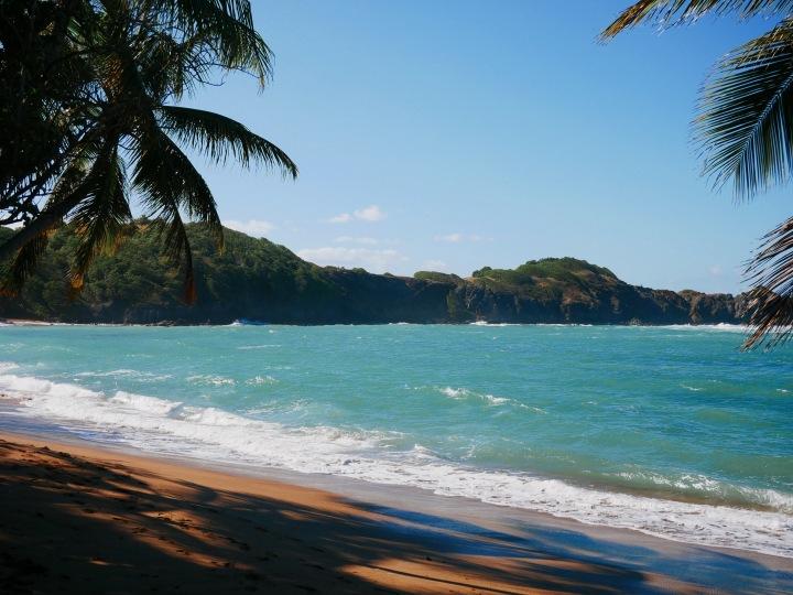 Les 5 plus belles plages deMartinique